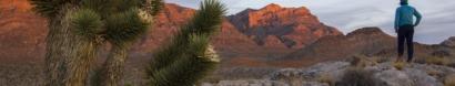 Friends of Nevada Wilderness
